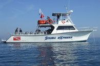 charters boats
