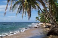 Barefoot Luxury at Playa Punta Uva, minutes from Geckoes