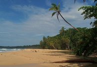 Playa Grande, just down the road from Geckoes