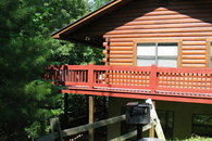 Spacious Pet-Friendly Cabin near Dollywood