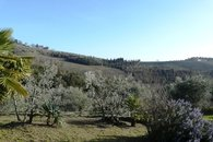 Tuscan cottage to rent Castellina in Chianti