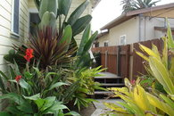 Steps from Beach: Ocean Beach Orca Cottage
