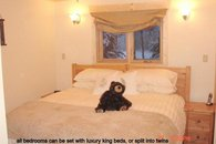 all the bedrooms are of similar size and luxury and can be set as a king bed or twin