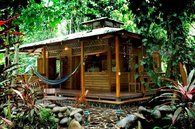Root House at Congo Bongo