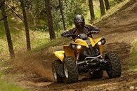 Quad Bike through the forest