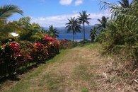 Bula Vista driveway, Savusavu, Fiji