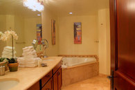 Luxurious Master Bathroom