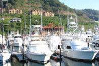 Los Suenos Marina